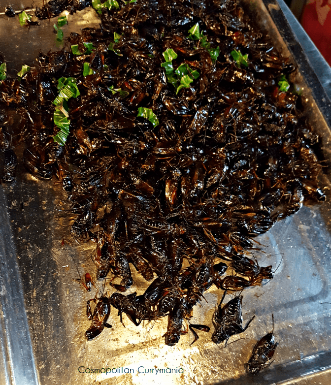 Edible insects: crickets